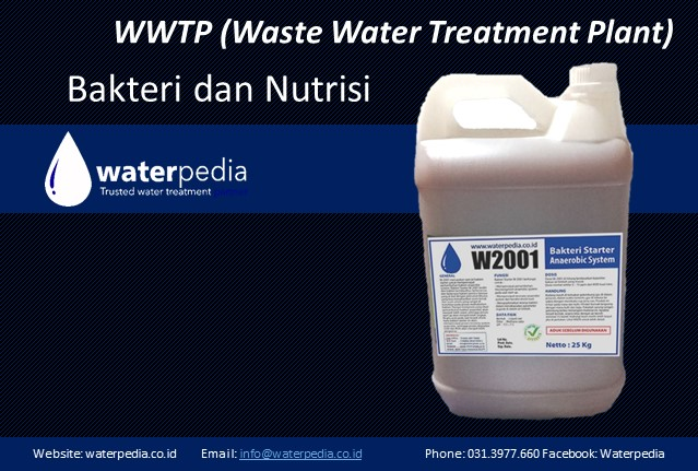 Bakteri dan Nutrisi